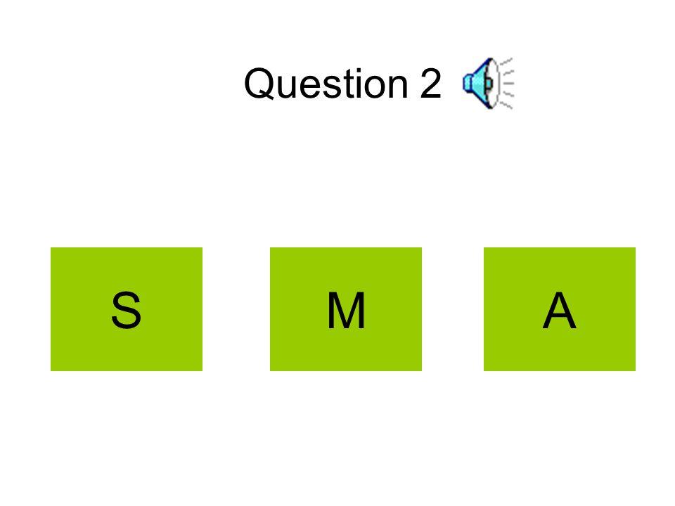 Question 2 SAM