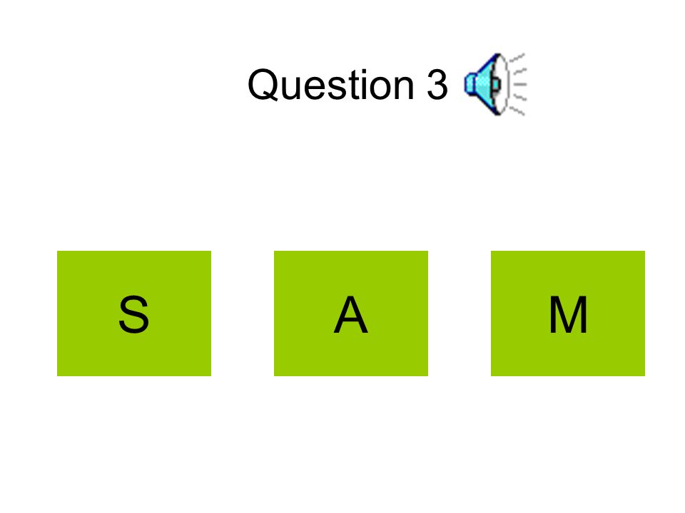 Question 3 MAS