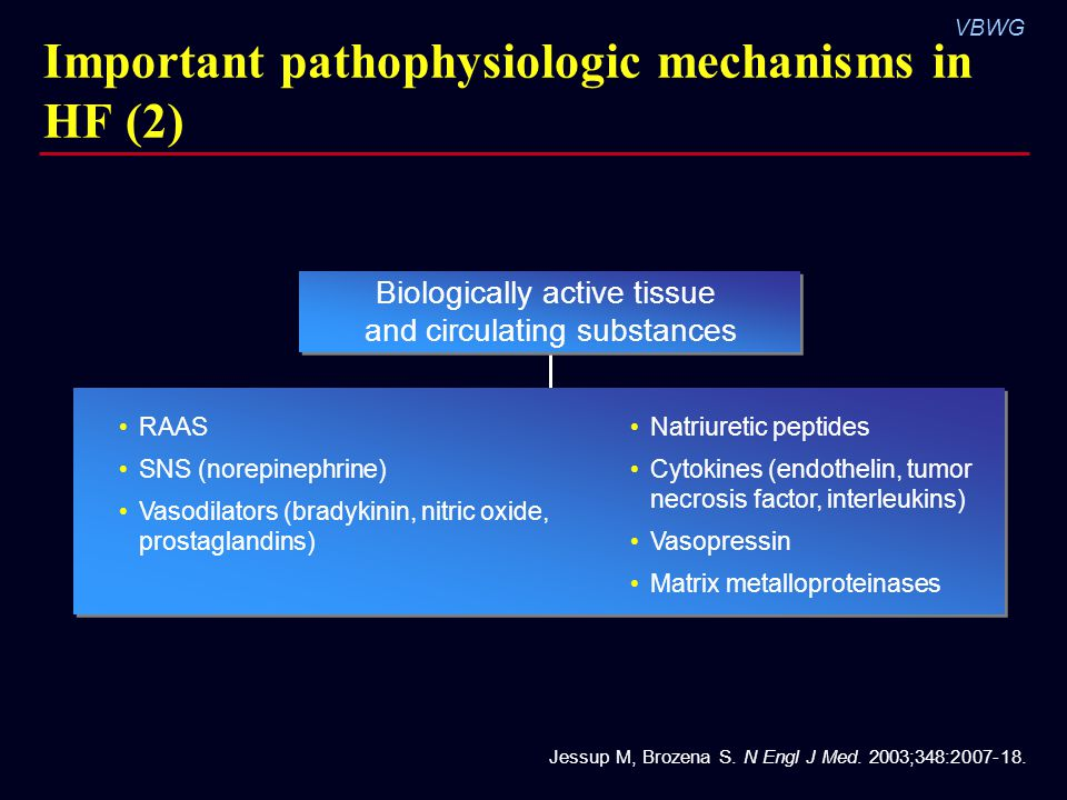 VBWG Important pathophysiologic mechanisms in HF (2) RAAS SNS (norepinephrine) Vasodilators (bradykinin, nitric oxide, prostaglandins) Natriuretic pep