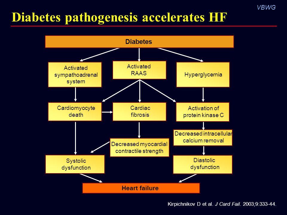 VBWG Diabetes pathogenesis accelerates HF Kirpichnikov D et al. J Card Fail. 2003;9:333-44. Activation of protein kinase C Hyperglycemia Heart failure