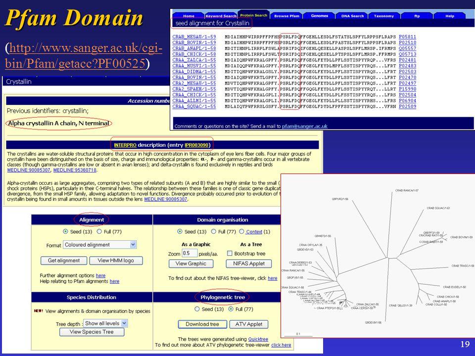 19 Pfam Domain (http://www.sanger.ac.uk/cgi- bin/Pfam/getacc PF00525)http://www.sanger.ac.uk/cgi- bin/Pfam/getacc PF00525