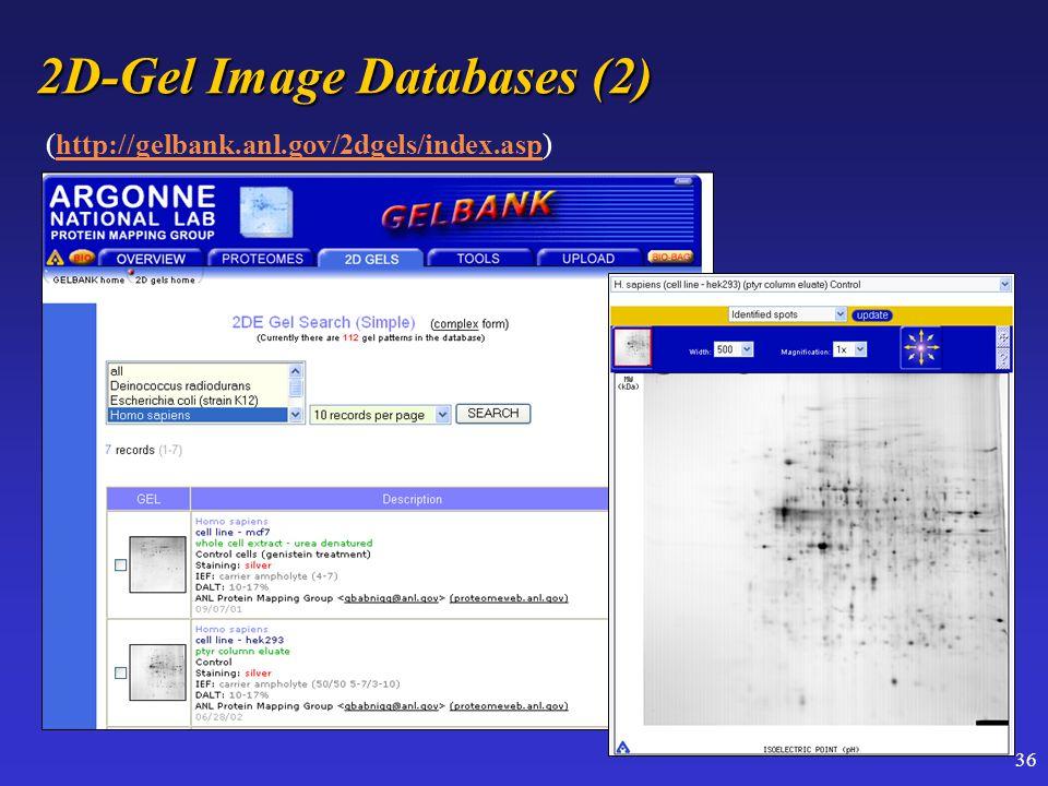 36 2D-Gel Image Databases (2) (http://gelbank.anl.gov/2dgels/index.asp)http://gelbank.anl.gov/2dgels/index.asp