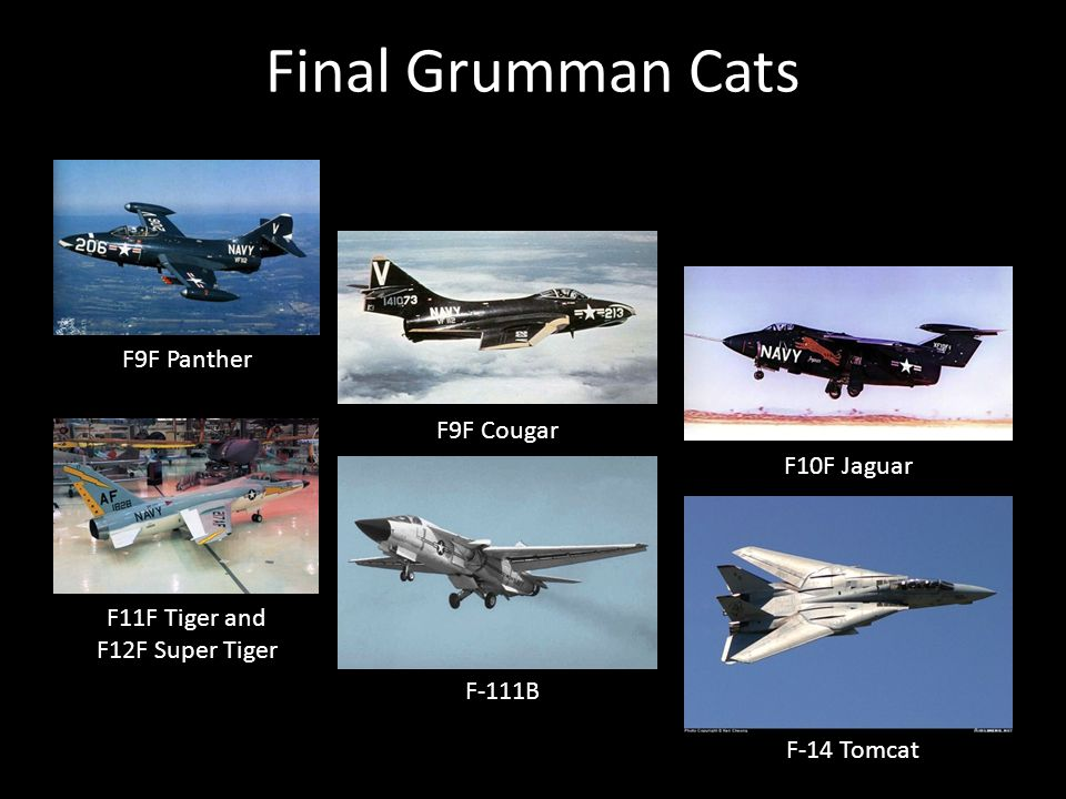 Final Grumman Cats F9F Panther F9F Cougar F10F Jaguar F11F Tiger and F12F Super Tiger F-111B F-14 Tomcat