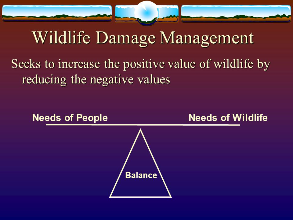 Wildlife Damage Management Seeks to increase the positive value of wildlife by reducing the negative values Needs of PeopleNeeds of Wildlife Balance
