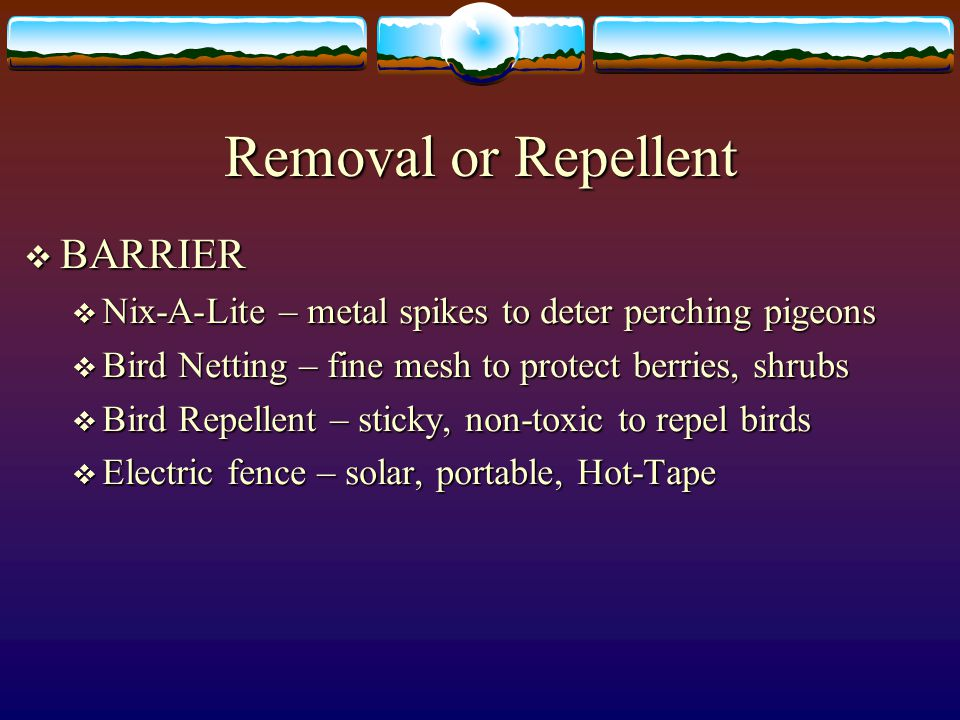  BARRIER  Nix-A-Lite – metal spikes to deter perching pigeons  Bird Netting – fine mesh to protect berries, shrubs  Bird Repellent – sticky, non-t