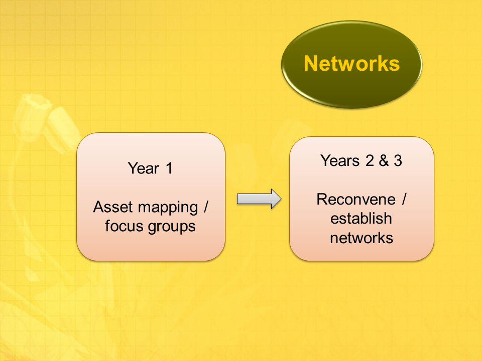 Networks Year 1 Asset mapping / focus groups Year 1 Asset mapping / focus groups Years 2 & 3 Reconvene / establish networks Years 2 & 3 Reconvene / establish networks