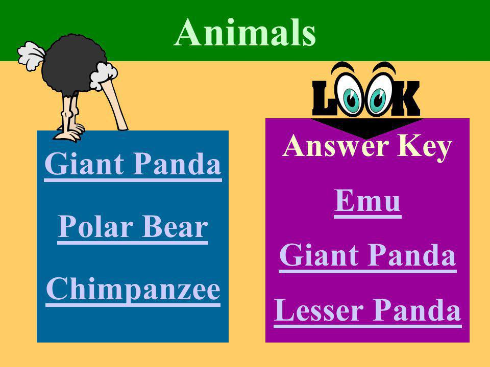 Animals Giant Panda Polar Bear Chimpanzee Answer Key Emu Giant Panda Lesser Panda