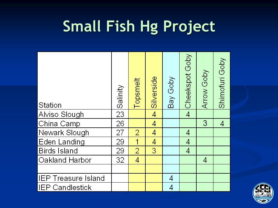 Small Fish Hg Project 3