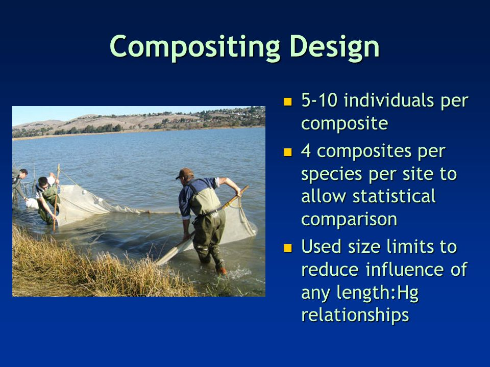 Comparison to fish/wildlife risk thresholds * Tissue concentration dry weight
