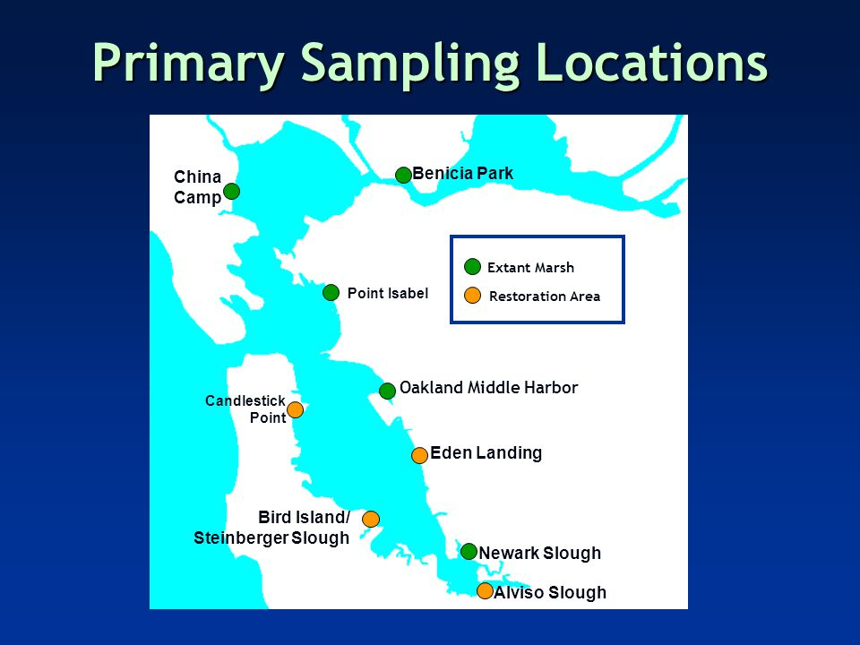 Spatial Patterns USFWS Survey '06 Primary (Topsmelt)