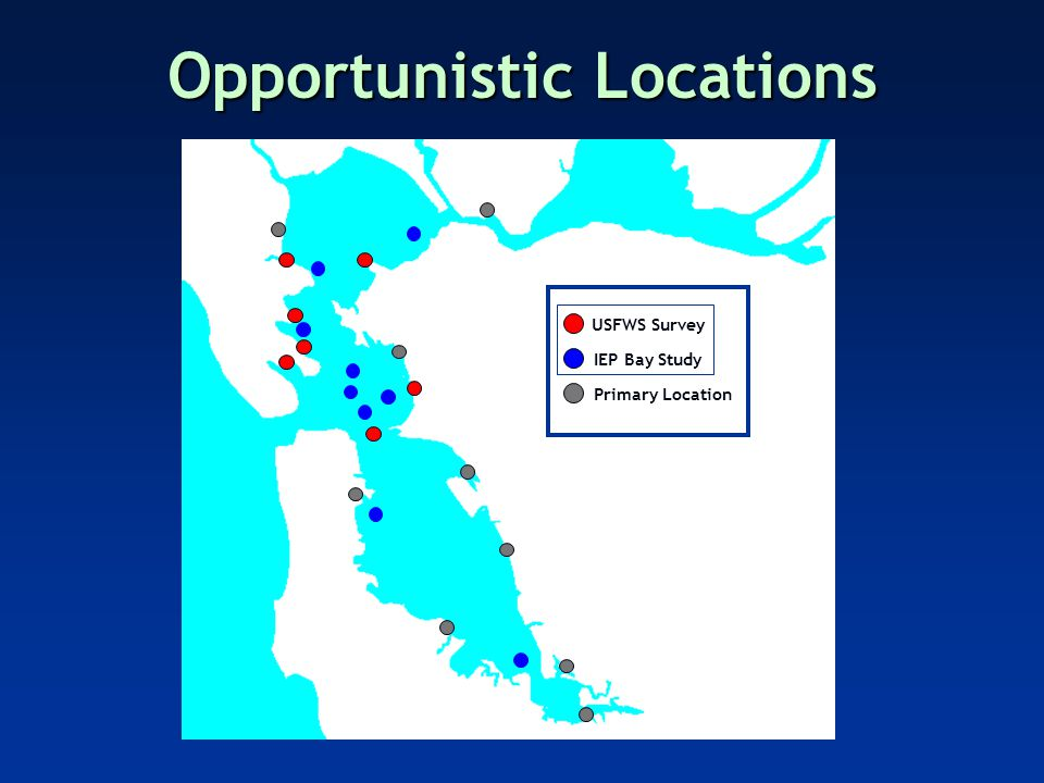 Opportunistic Locations USFWS Survey Primary Location IEP Bay Study