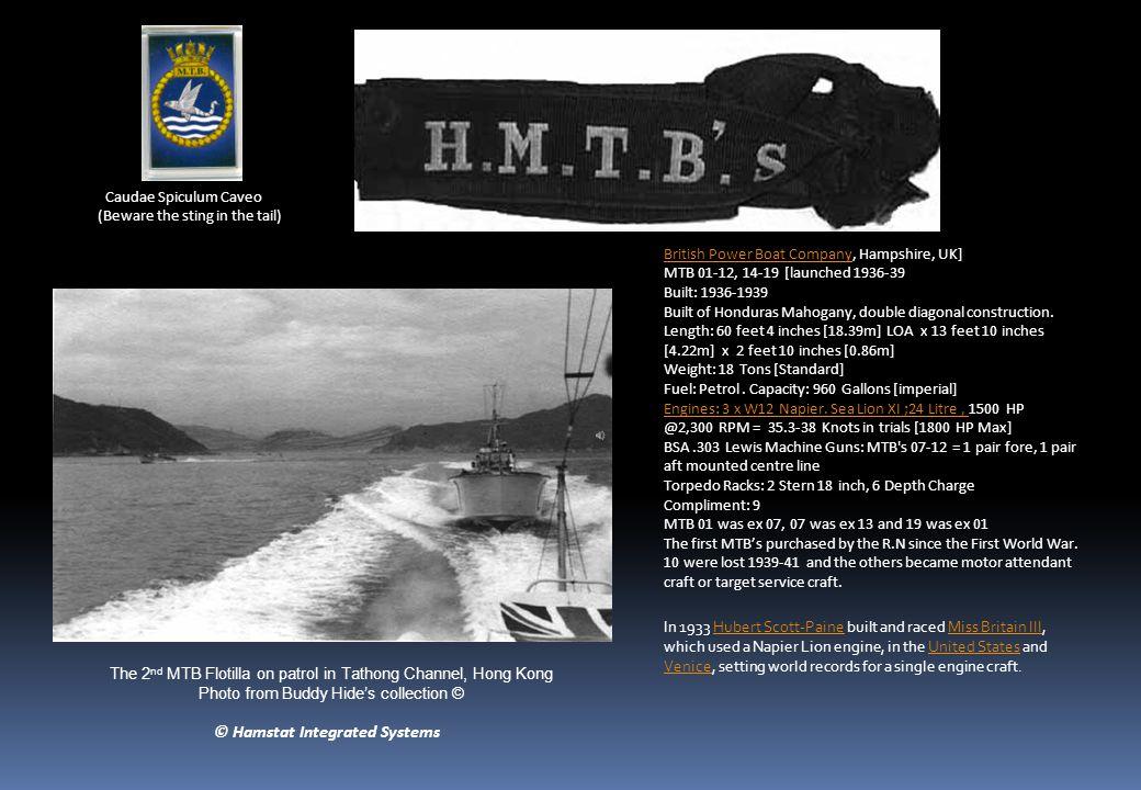 British Power Boat CompanyBritish Power Boat Company, Hampshire, UK] MTB 01-12, 14-19 [launched 1936-39 Built: 1936-1939 Built of Honduras Mahogany, double diagonal construction.