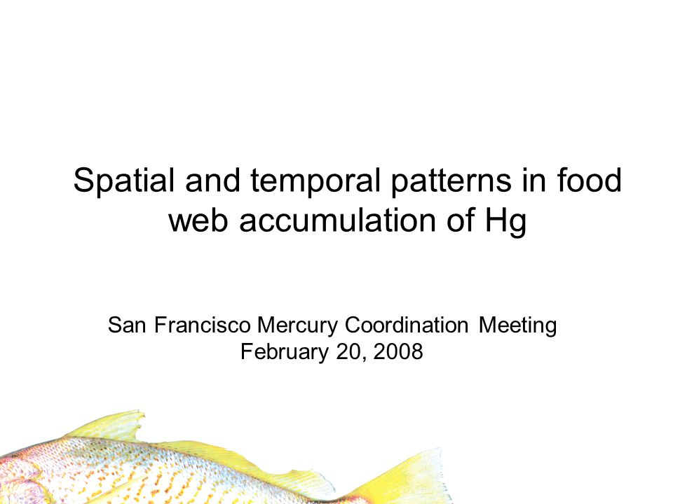 Spatial survey Targeting 40 locations Multiple interrelated factors A.Land use, land cover, and Hg sources B.Spatial location in Bay C.Subtidal hydrology and bathymetry D.Sediment physical and chemical parameters
