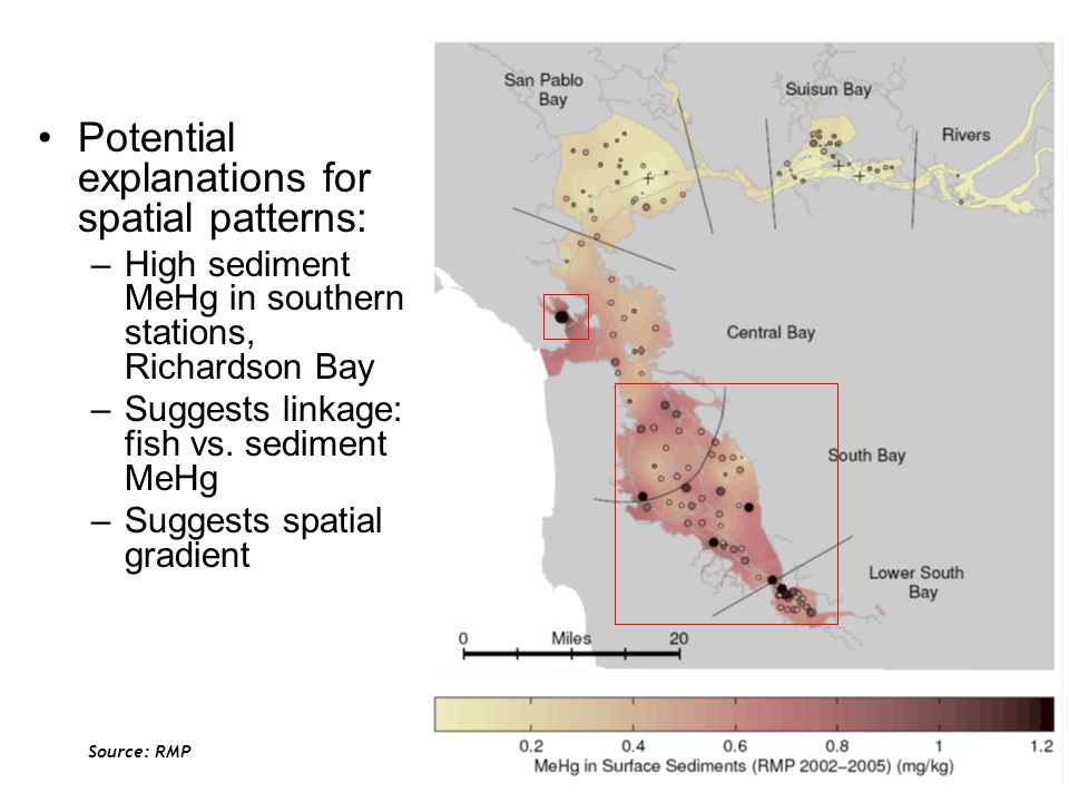 Potential explanations for spatial patterns: –High sediment MeHg in southern stations, Richardson Bay –Suggests linkage: fish vs.