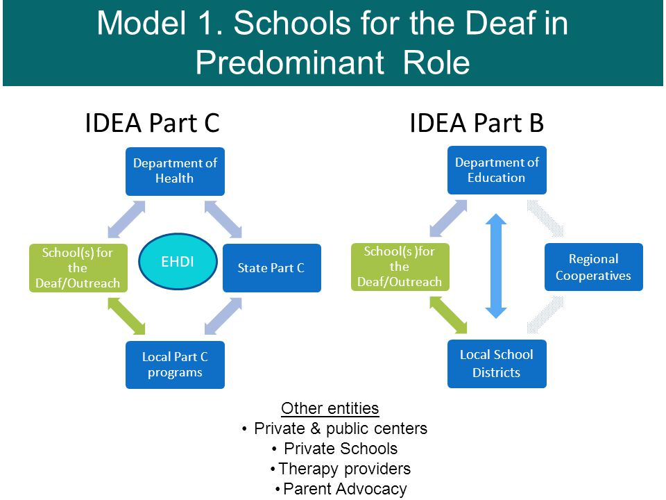 IDEA Part C IDEA Part B Department of Health State Part C Local Part C programs School(s) for the Deaf/Outreach Department of Education Regional Cooperatives Local School Districts School(s )for the Deaf/Outreach Other entities Private & public centers Private Schools Therapy providers Parent Advocacy EHDI Model 1.