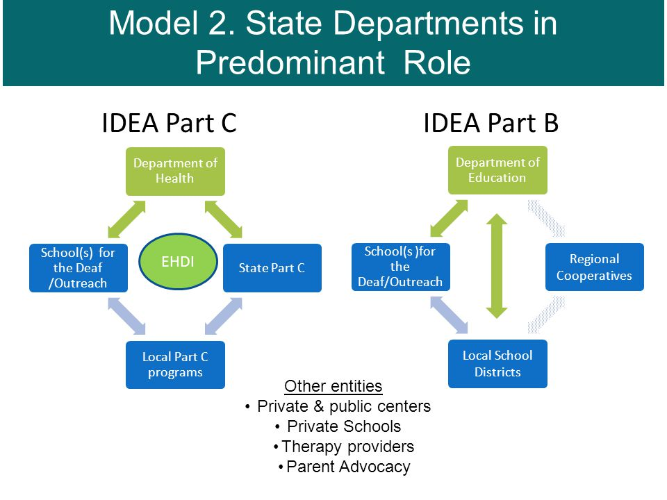 IDEA Part C IDEA Part B Department of Health State Part C Local Part C programs School(s) for the Deaf /Outreach Department of Education Regional Cooperatives Local School Districts School(s )for the Deaf/Outreach Other entities Private & public centers Private Schools Therapy providers Parent Advocacy EHDI Model 2.