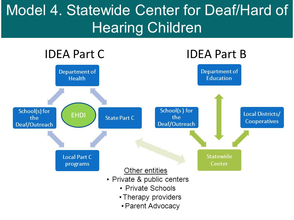 IDEA Part C IDEA Part B Department of Health State Part C Local Part C programs School(s) for the Deaf/Outreach Department of Education Local Districts/ Cooperatives Statewide Center School(s ) for the Deaf/Outreach Other entities Private & public centers Private Schools Therapy providers Parent Advocacy EHDI Model 4.