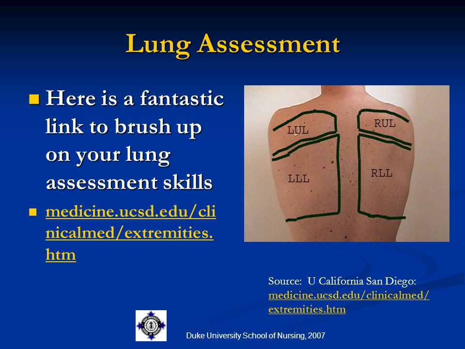 Duke University School of Nursing, 2007 Lung Assessment Here is a fantastic link to brush up on your lung assessment skills Here is a fantastic link t