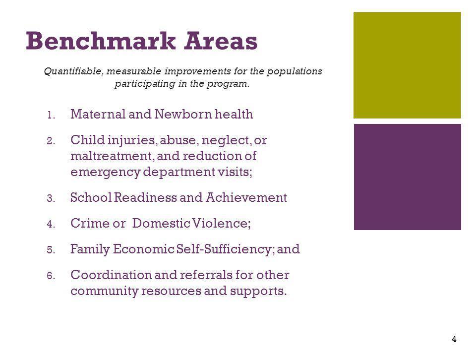 + Benchmark Areas 1. Maternal and Newborn health 2.