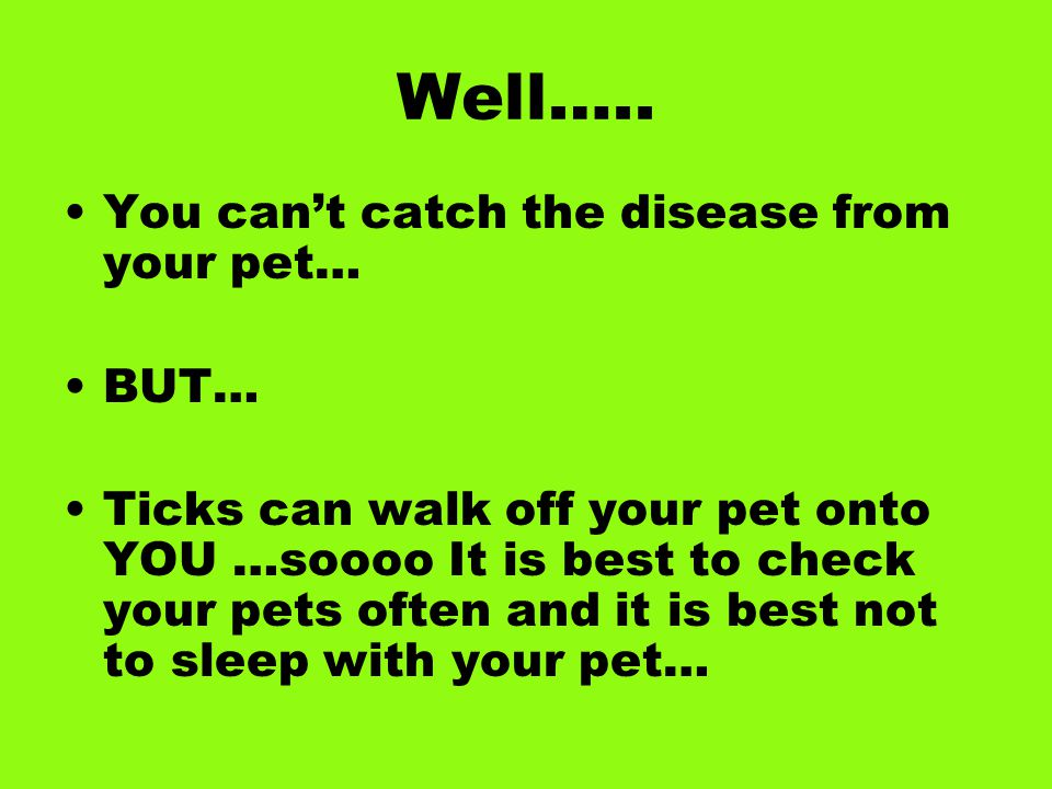 Well….. You can't catch the disease from your pet… BUT… Ticks can walk off your pet onto YOU …soooo It is best to check your pets often and it is best