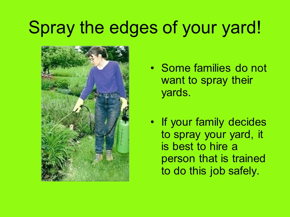 Spray the edges of your yard! Some families do not want to spray their yards. If your family decides to spray your yard, it is best to hire a person t