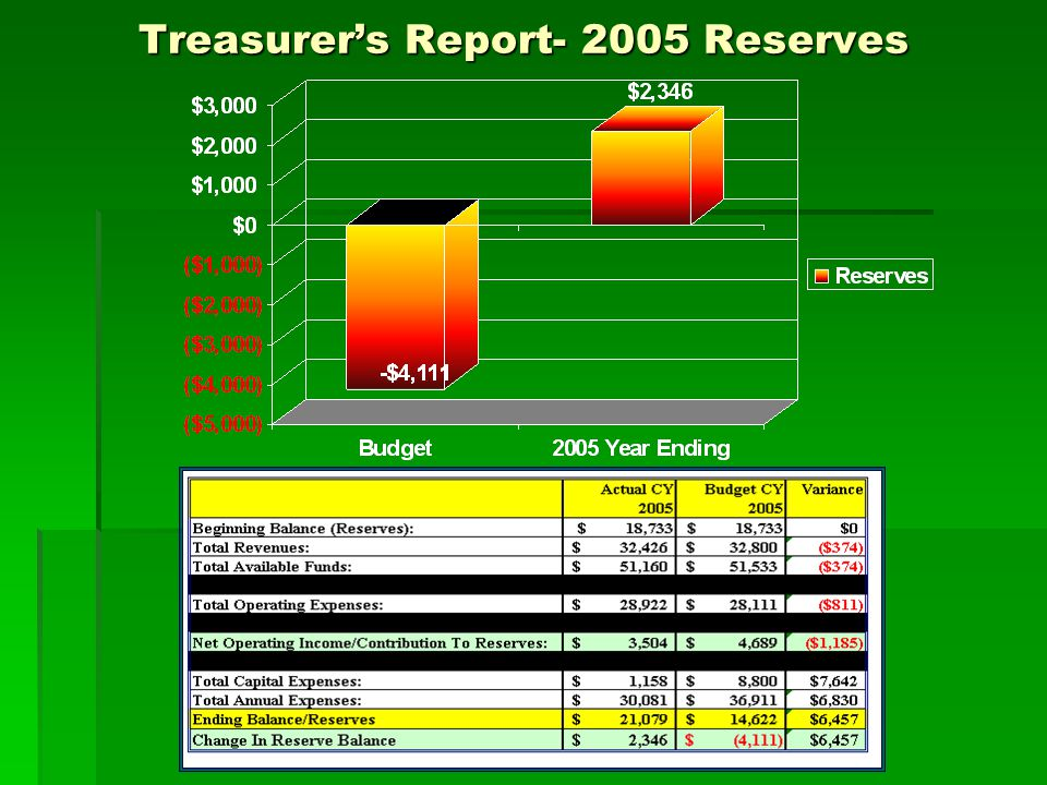 Treasurer's Report- 2005 Reserves