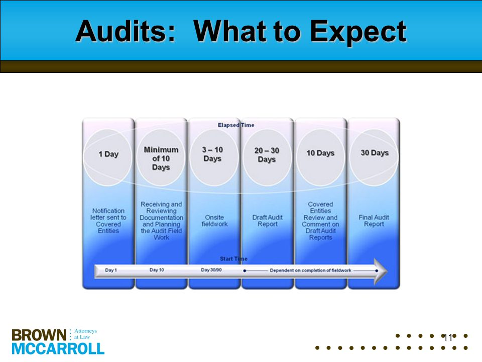 11 Audits: What to Expect