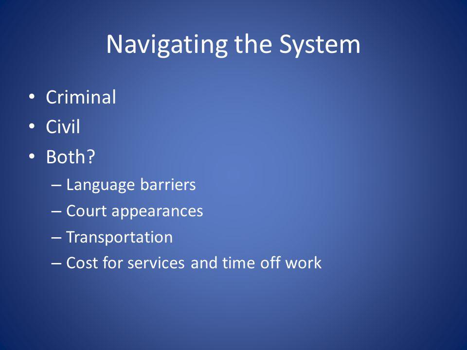 Navigating the System Criminal Civil Both.