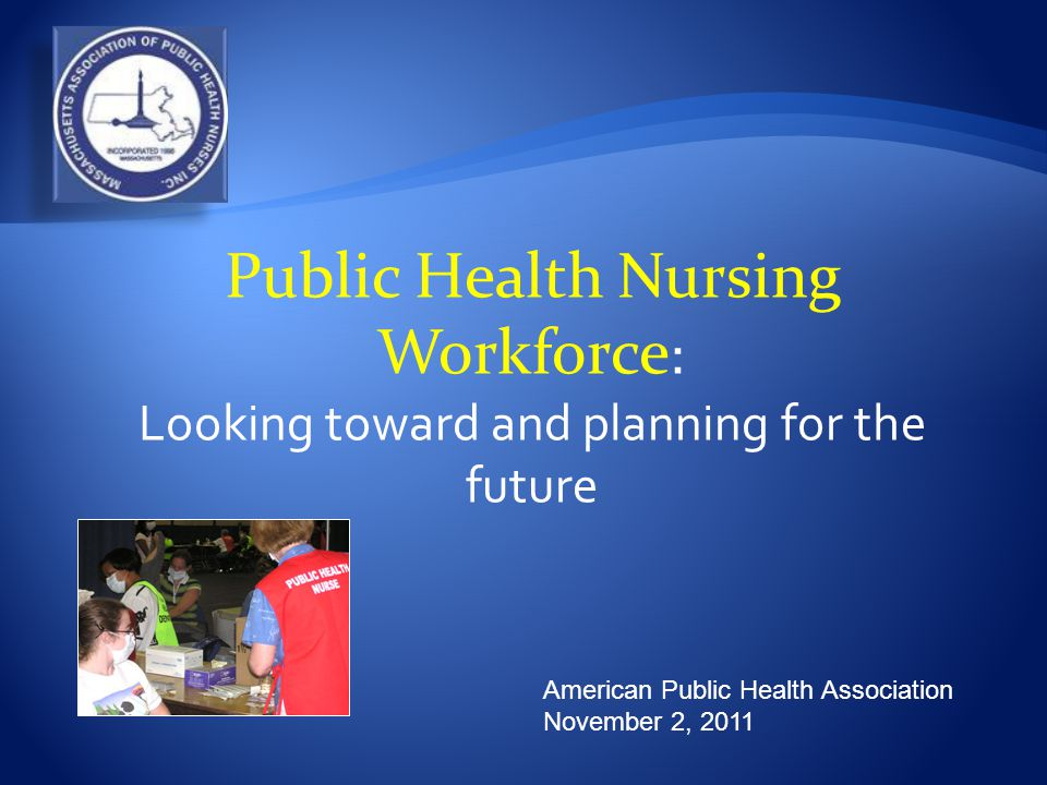American Public Health Association November 2, 2011 Public Health Nursing Workforce : Looking toward and planning for the future