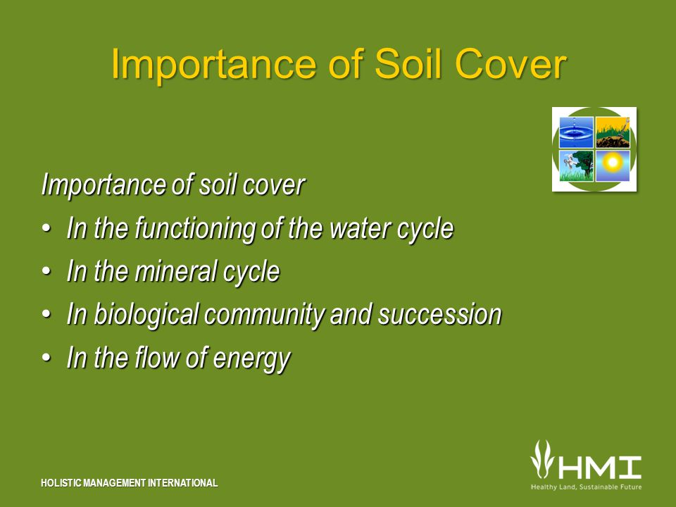 HOLISTIC MANAGEMENT INTERNATIONAL Importance of Soil Cover Importance of soil cover In the functioning of the water cycle In the functioning of the water cycle In the mineral cycle In the mineral cycle In biological community and succession In biological community and succession In the flow of energy In the flow of energy