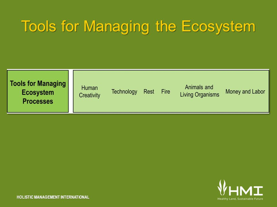 HOLISTIC MANAGEMENT INTERNATIONAL Tools for Managing the Ecosystem