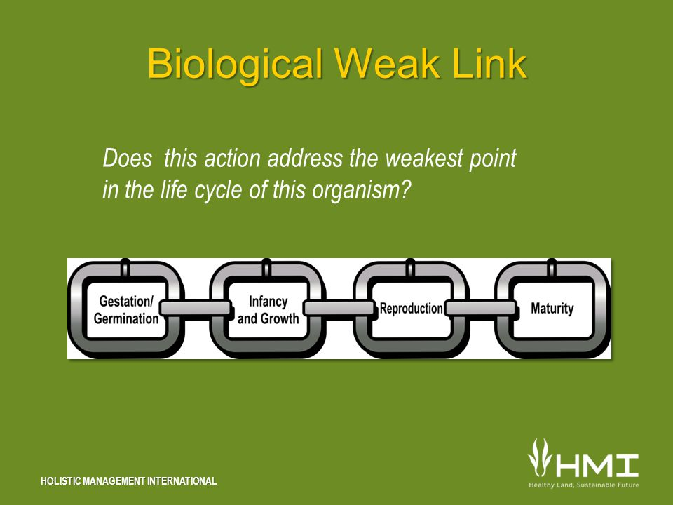 HOLISTIC MANAGEMENT INTERNATIONAL Biological Weak Link Does this action address the weakest point in the life cycle of this organism?
