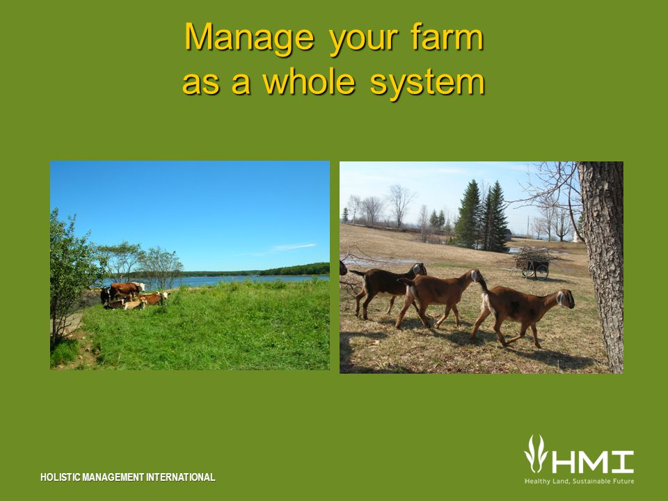 HOLISTIC MANAGEMENT INTERNATIONAL Manage your farm as a whole system