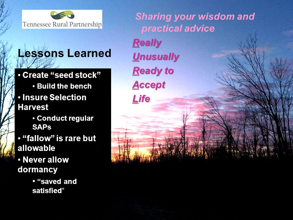 "Lessons Learned Sharing your wisdom and practical advice Really Unusually Ready to Accept Life Create ""seed stock"" Build the bench Insure Selection Ha"