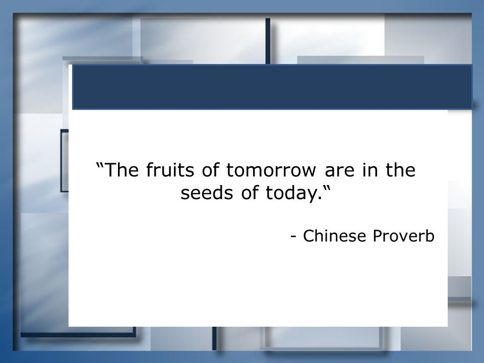 """""""The fruits of tomorrow are in the seeds of today."""" - Chinese Proverb"""