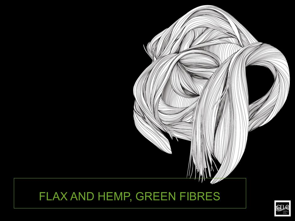 FLAX AND HEMP, GREEN FIBRES