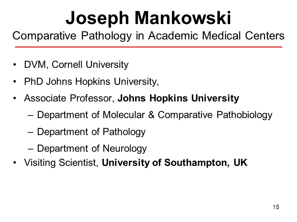 15 Joseph Mankowski Comparative Pathology in Academic Medical Centers DVM, Cornell University PhD Johns Hopkins University, Associate Professor, Johns Hopkins University –Department of Molecular & Comparative Pathobiology –Department of Pathology –Department of Neurology Visiting Scientist, University of Southampton, UK