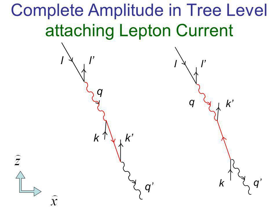Complete Amplitude in Tree Level attaching Lepton Current