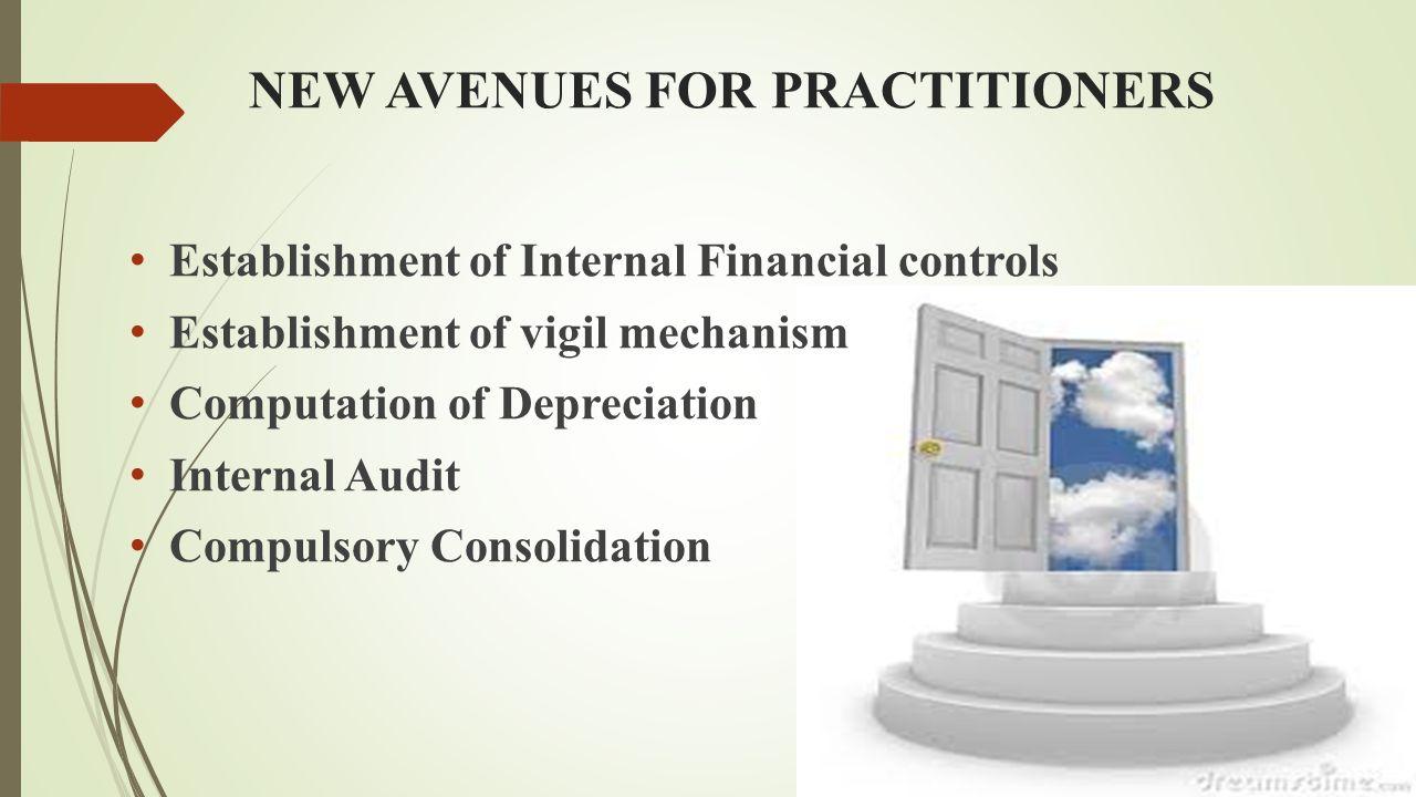 NEW AVENUES FOR PRACTITIONERS Establishment of Internal Financial controls Establishment of vigil mechanism Computation of Depreciation Internal Audit