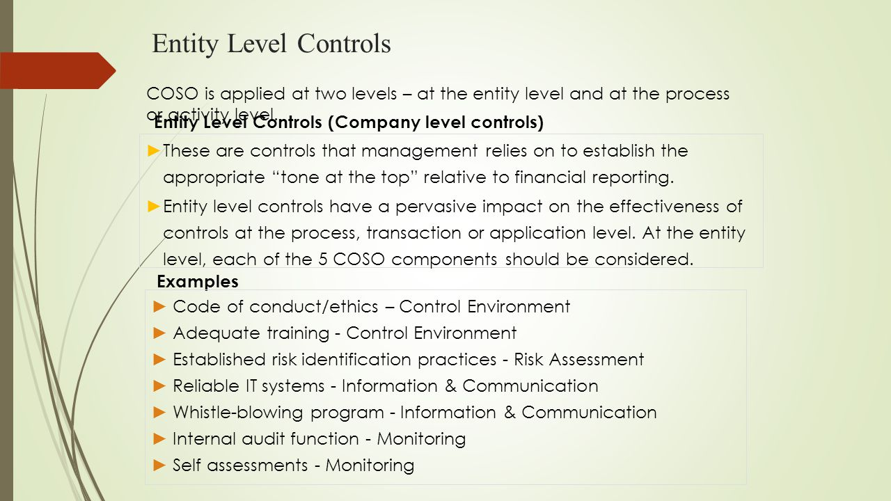 """Entity Level Controls Entity Level Controls (Company level controls) ► These are controls that management relies on to establish the appropriate """"tone"""