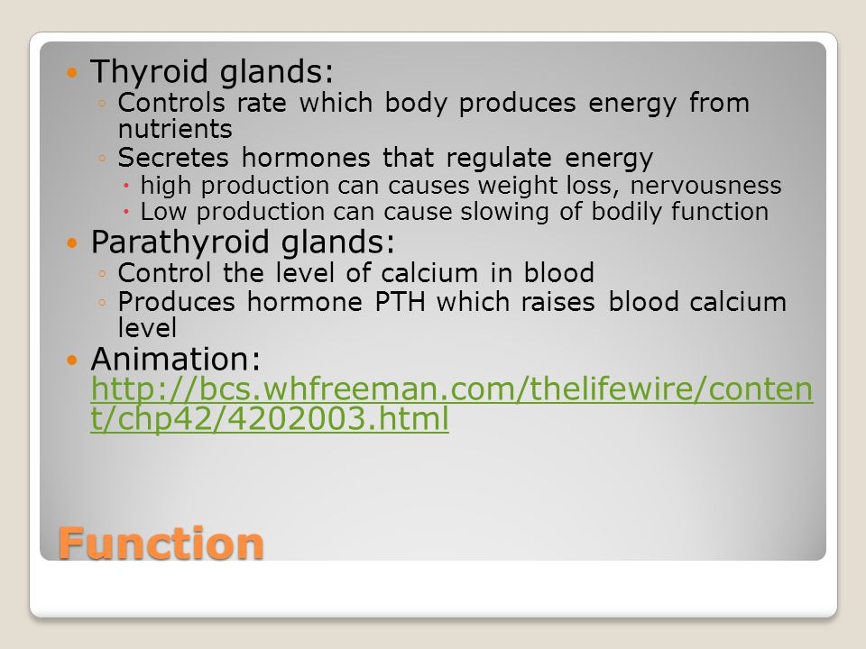 Function Thyroid glands: ◦Controls rate which body produces energy from nutrients ◦Secretes hormones that regulate energy  high production can causes