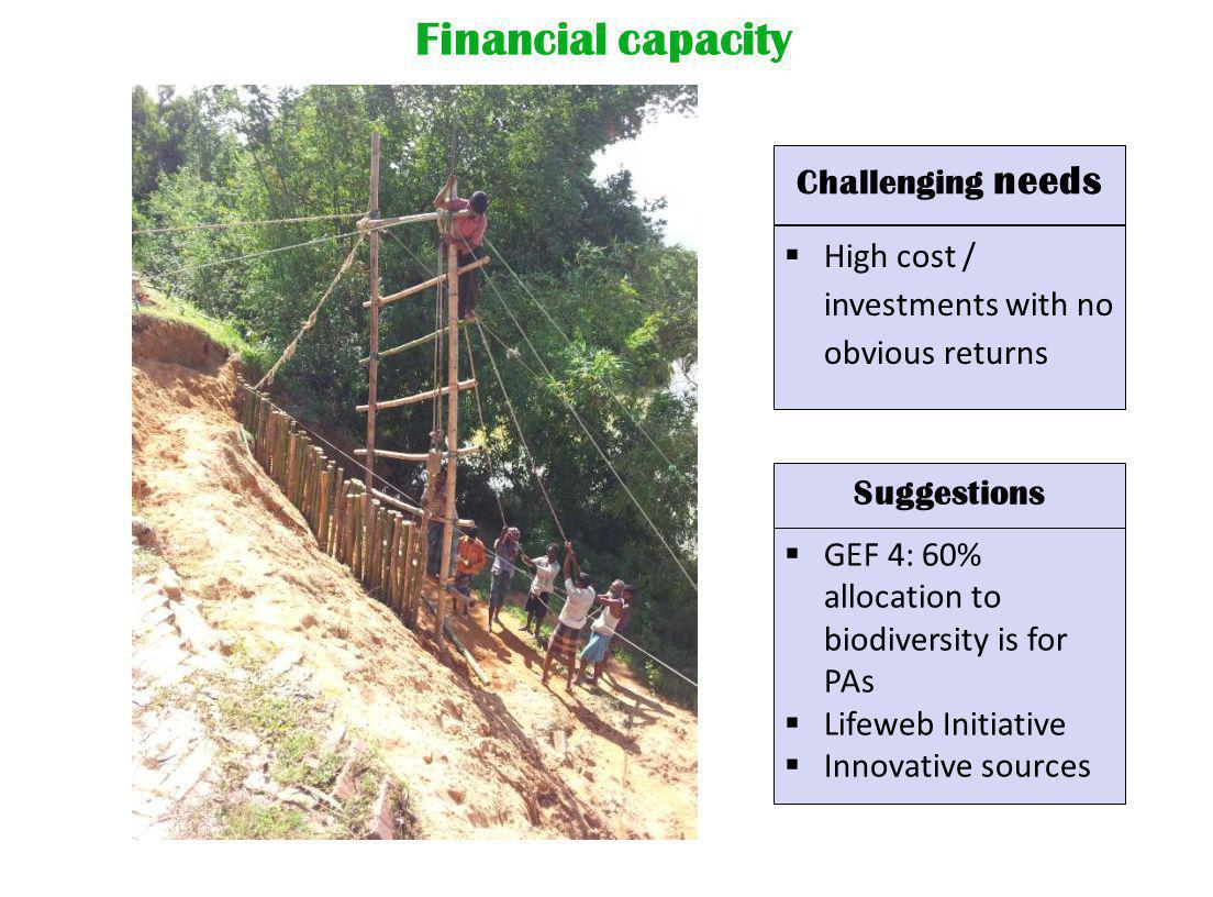 Financial capacity Suggestions  GEF 4: 60% allocation to biodiversity is for PAs  Lifeweb Initiative  Innovative sources  High cost / investments with no obvious returns Challenging needs