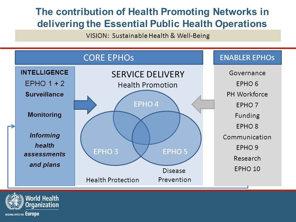 Governance EPHO 6 PH Workforce EPHO 7 Funding EPHO 8 Communication EPHO 9 Research EPHO 10 The contribution of Health Promoting Networks in delivering