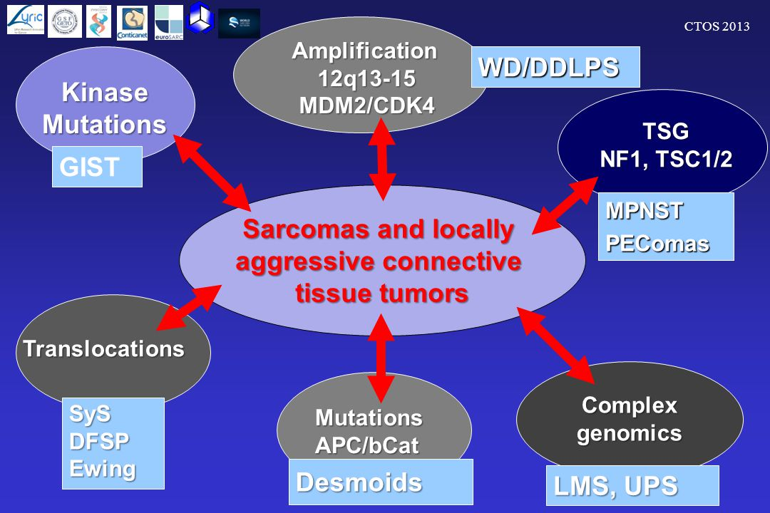 CTOS 2013 GIST Sarcomas and locally aggressive connective tissue tumors KinaseMutations Translocations SySDFSPEwing MutationsAPC/bCat Desmoids WD/DDLPS Amplification12q13-15MDM2/CDK4 MPNSTPEComas TSG NF1, TSC1/2 Complexgenomics LMS, UPS