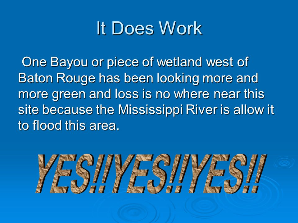 It Does Work One Bayou or piece of wetland west of Baton Rouge has been looking more and more green and loss is no where near this site because the Mississippi River is allow it to flood this area.