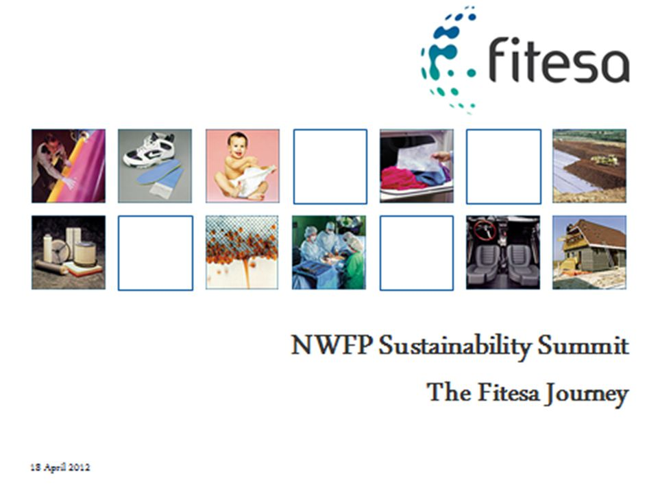 Fitesa Case Study January 18, 2012