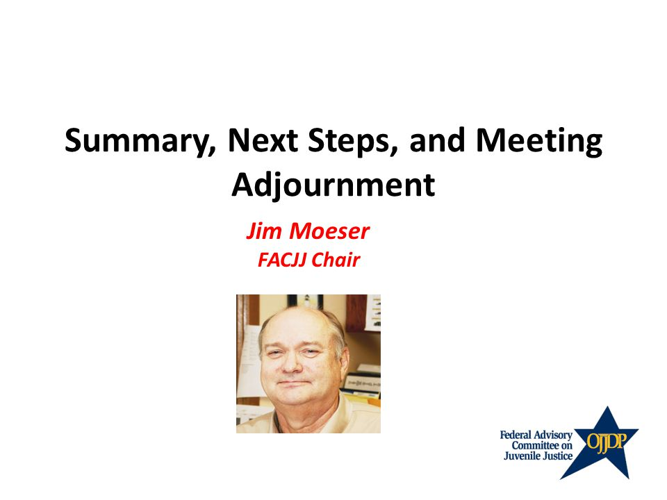 Summary, Next Steps, and Meeting Adjournment Jim Moeser FACJJ Chair