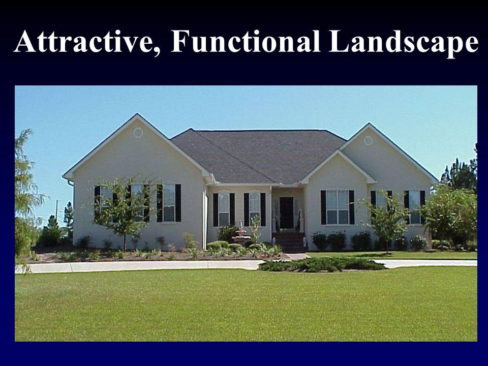 Attractive, Functional Landscape