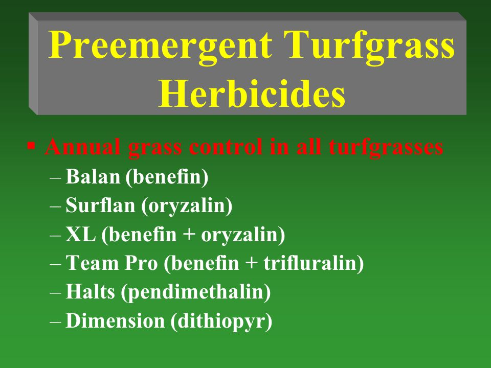 Preemergent Turfgrass Herbicides  Annual grass control in all turfgrasses –Balan (benefin) –Surflan (oryzalin) –XL (benefin + oryzalin) –Team Pro (benefin + trifluralin) –Halts (pendimethalin) –Dimension (dithiopyr)
