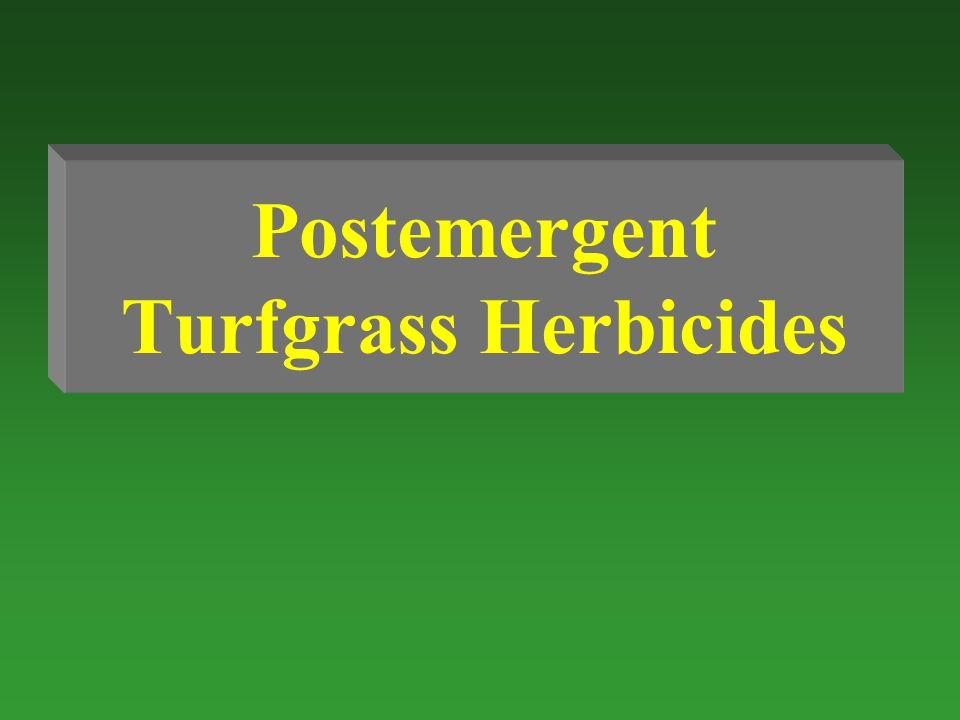 Postemergent Turfgrass Herbicides